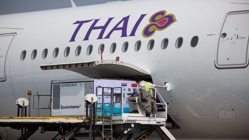 GOED NIEUWS | de 200.000 doses Sinovac op de luchthaven Suvarnabhumi aangekomen
