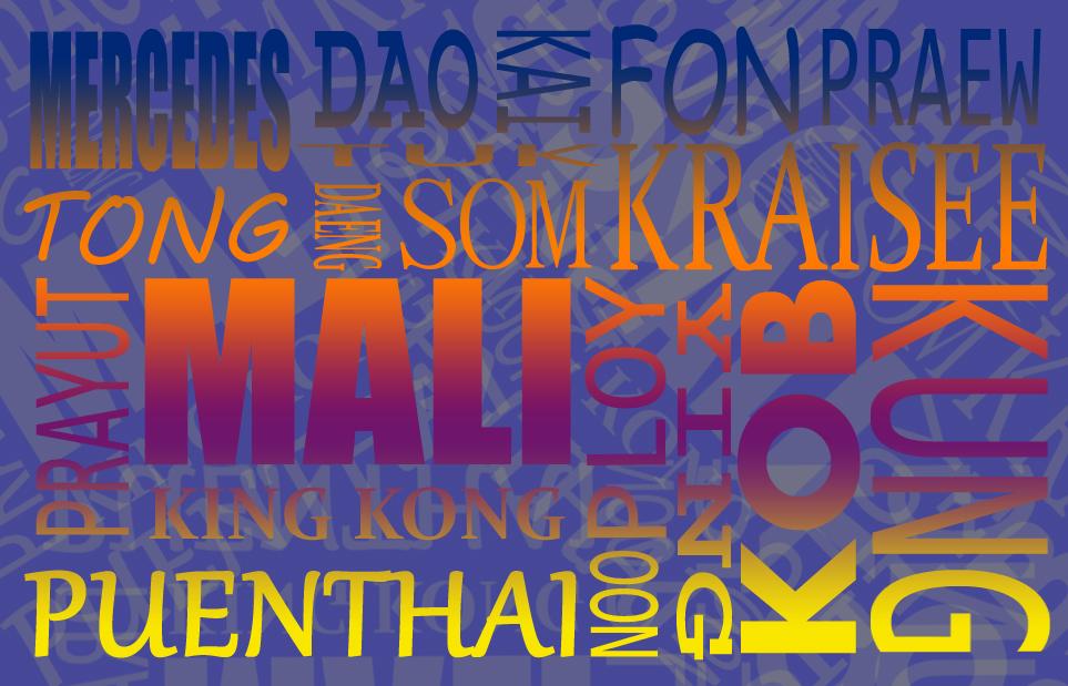 De wondere wereld van Thaise bijnamen!