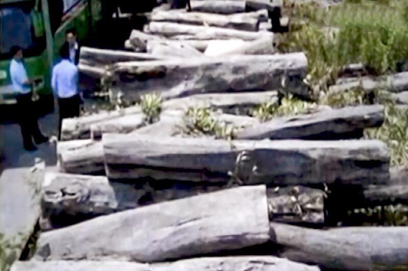 Hoofd van de afdeling natuurlijke hulpbronnen van Mukdahan gearresteerd wegens illegale houtkap