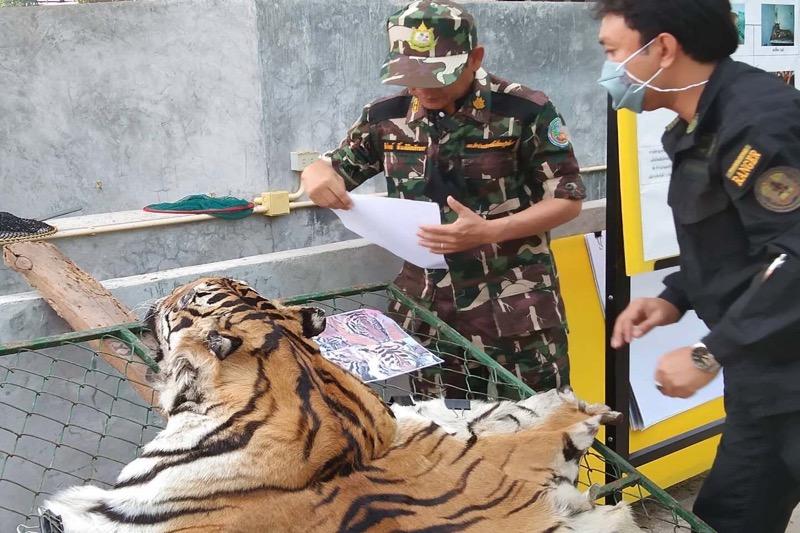 Aanklacht ingediend tegen tijgerboerderij na gruwelijke vondst