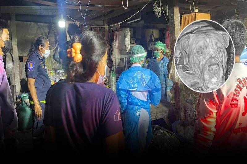 Reddingsdienst van Pattaya bevrijdt een Thaise man uit de kaken van zijn hond