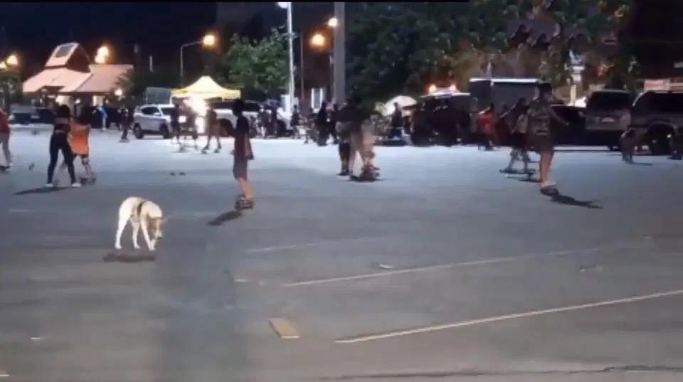 Tientallen mensen op het strand van Bangsaen gearresteerd, omdat ze naar verluidt de regels van Covid-19 overtreden, alcohol dronken en zich socialiseerden