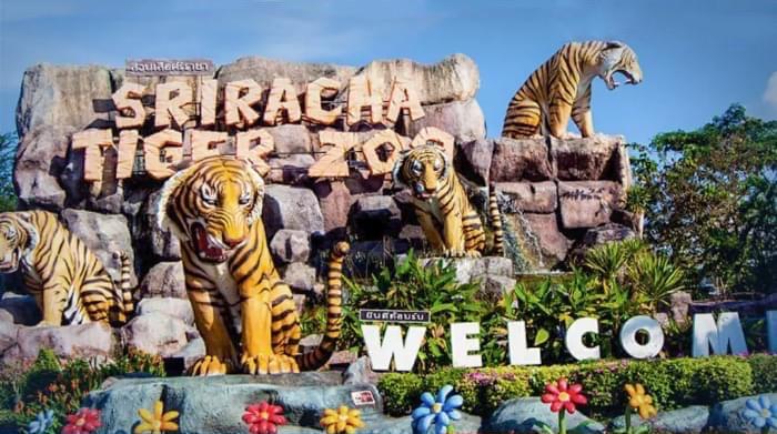 De Sriracha Tiger Zoo in Chonburi sluit na 24 jaar de poort