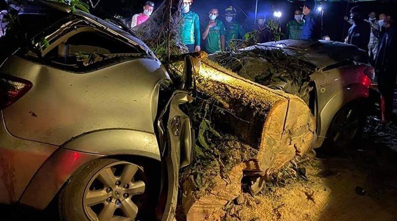 3 familieleden gedood toen een grote boom tijdens regenbui op hun auto viel