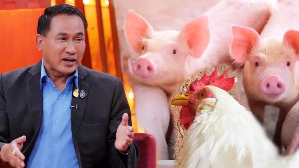 Het veedepartement van Thailand waarschuwt voor justitiële vervolging na fake-nieuws over varkensvlees, kippenconsumptie