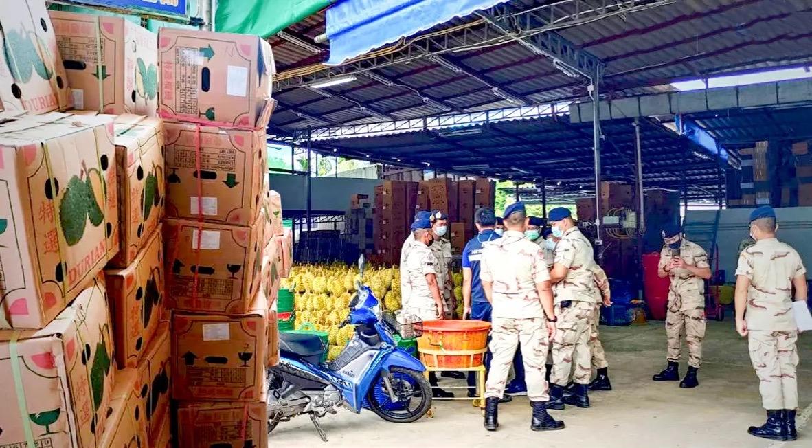 Thaise fruitexporteur in Chantaburi gearresteerd na het sjoemelen met de echtheid van Thaise doerians