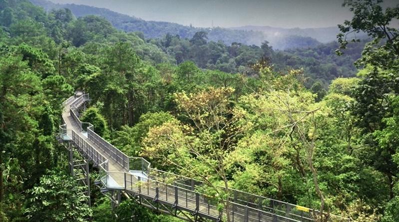 De Queen Sirikit Botanical Garden is Chiang Mai is voor toeristen heropent