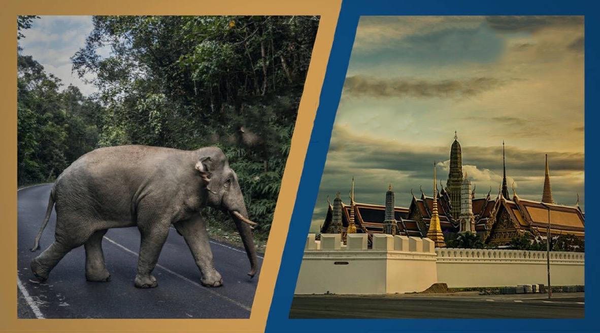 Volgens Time Magazine: zijn in Thailand de hoofdstad Bangkok en nationaal park Khao Yai de mooiste plaatsen