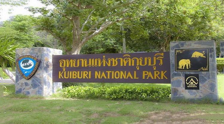 Het nationaal park van Kui Buri nabij Hua Hin is heropend