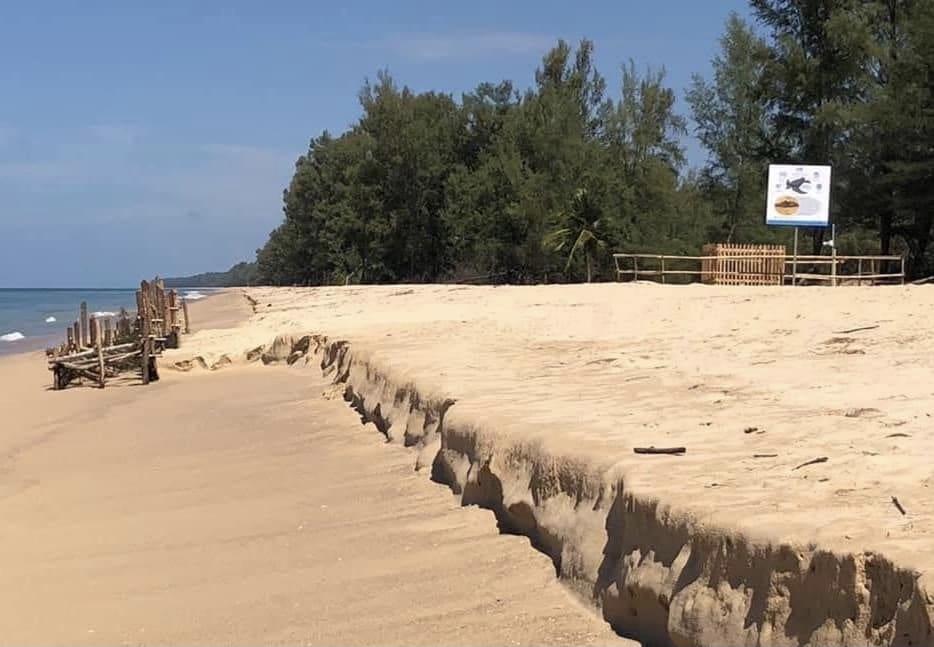 De voorgestelde zandsuppletie op Phang Nga vormt gevaar voor de bedreigde lederschildpadden